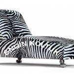 zebra josefin